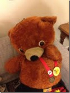 Mr Bear 1